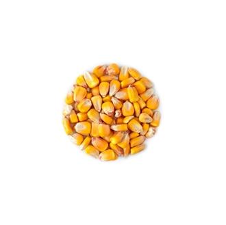 Imagen de Maiz eco 25kg
