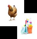 Imagen para la categoría LIMPIEZA Y ANIMALES